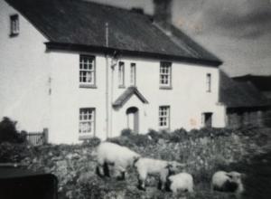 Locks-Beam-Farm-Torrington-North-Devon-England-circa-1970-copyright-Barbara-Hollyhead