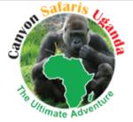 canyon-safaris-agave-blue-marketing